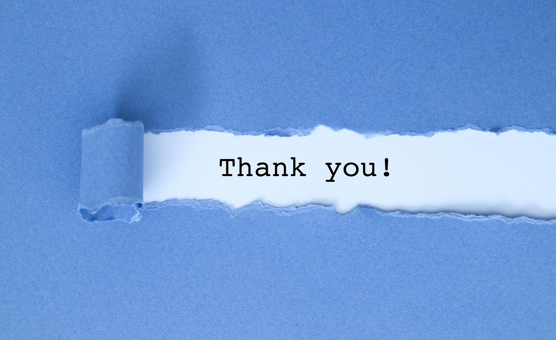 Thank you message under blue torn paper. | Toucan Computing